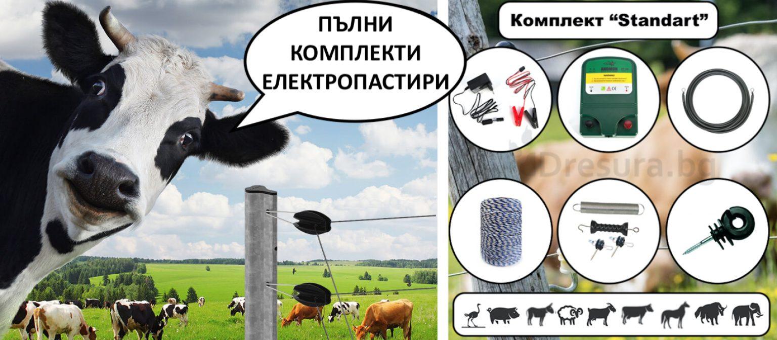 дресура-електронен-нашийник-безплатна-доставка-нашийник-дресура-електропастир-електропастири