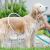 Circle Pet Washer 1 – Уред – Обръч за къпане на кучета, котки и други животни